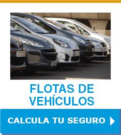 Seguro de flotas de vehículos