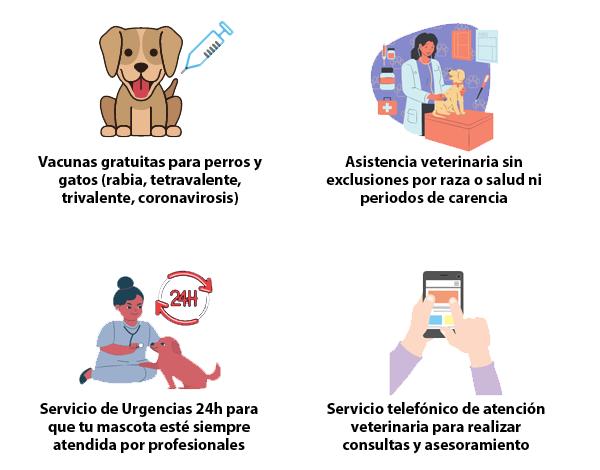 Iconos unidos de las mascotas